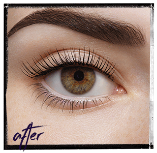 After LVL Lashes Angels Twelve